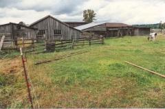 Olson farm, photo taken 1989. Copyright 2013 Genealogy Sisters.