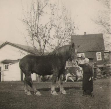 Zofia Szczerba Mirota and her favorite draft horse, Big Jake. Circa 1944. Copyright Genealogy Sisters.